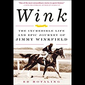 Wink Audiobook