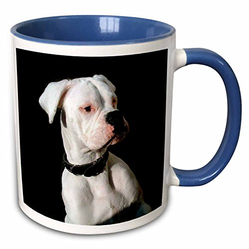 3dRose mug_1113_6