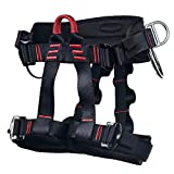 Climbing Harness -  Professional Mountaineering Rock Climbing Harness,Rappelling Safety Harness - Work Safety Belt (Black 1)