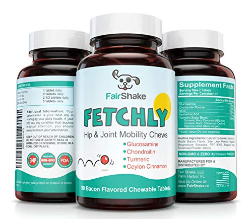 Best Joint Supplement Dogs - Glucosamine, Chondroitin, MSM & Turmeric - Supports Healthy Hip & Joints, Fights Inflammation & Arthritis Pain Relief - FETCHLY #1 Chews Small & Large Dog Breeds
