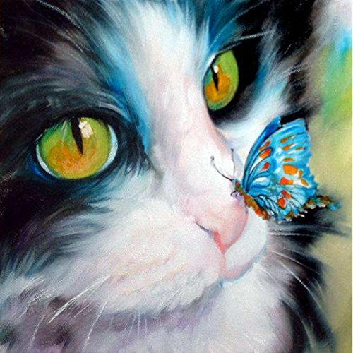 Woaills Cat and Butterfly DIY 5D Diamond Embroidery Painting Cross Stitch Home Decor Craft (A:3030CM)
