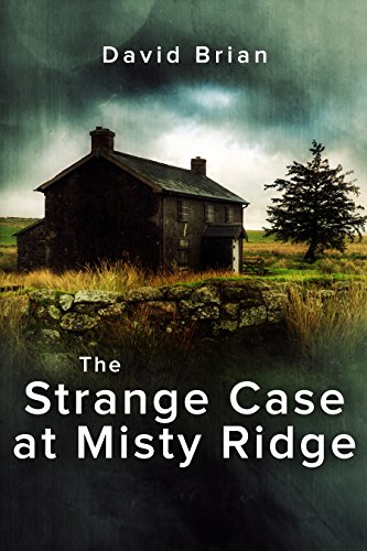 The Strange Case At Misty Ridge by David Brian ebook deal