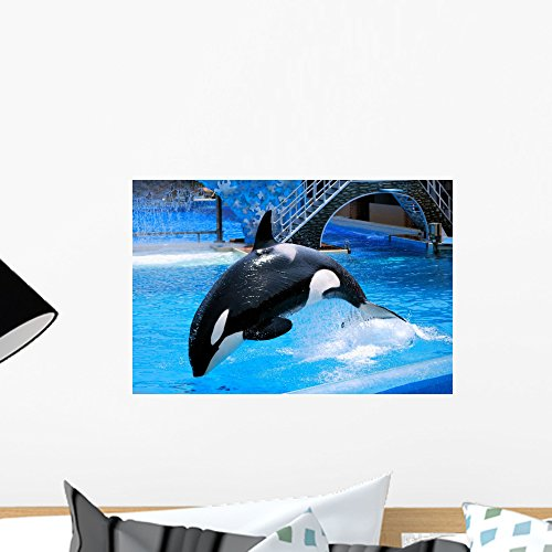 Jumping Killer Whale Wall Mural by Wallmonkeys Peel and Stick Graphic (18 in W x 12 in H) WM35409 (Whale Mural)
