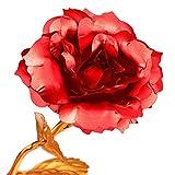ALLOMN 24K Golden Rose, Plastic Long Stem Real Rose