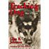 Tracking Dog: Theory and Methods