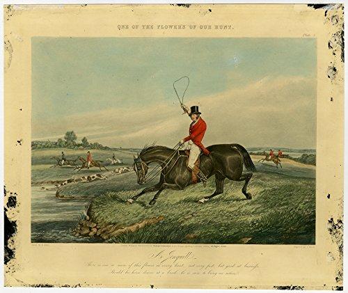 Antique Print-HUNTING-HORSES-FOXHOUNDS-Alken-Harris-1851 (Alken Horse)