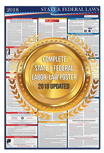 2018 Texas Federal and State Labor Law Posters - UV Protected 24'' x 36'' by State Labor Poster (Image #2)