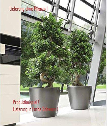 Blumenübertopf Classico Premium, sonnen-und regenbeständig für Innen und Außen, Farbe Schwarz, Ø ca.60cm Höhe ca.56cm