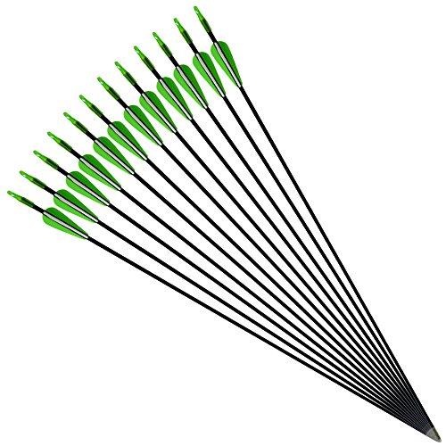 SHARRW Fiberglass Arrows 30 inch 6 mm Hunting Practice Arrows Shaftfor Youth Women (Green, 6 ()