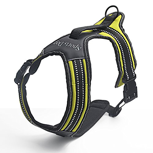 Harness Attachment Options Reflective Stitching product image