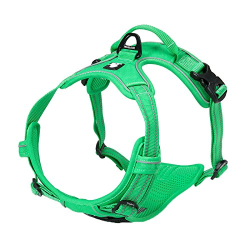 Grass green S Grass green S Pet Harem- Pet Chest Harness Dog Leash Strap Explosion Proof Red Dog Leash Chest Back Multiple Sizes and colors are Available (color   Grass Green, Size   S)