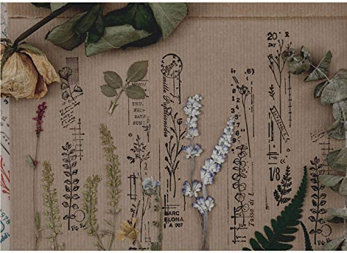 M-78 Cliocoo 8pcs Vintage Plants Wood Rubber Stamp Set