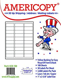 Americopy 3000 Blank Labels Name and Address Label, 2-5/8\