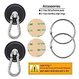 Ant Mag Magnetic Hooks 140LBS Heavy Duty Neodymium