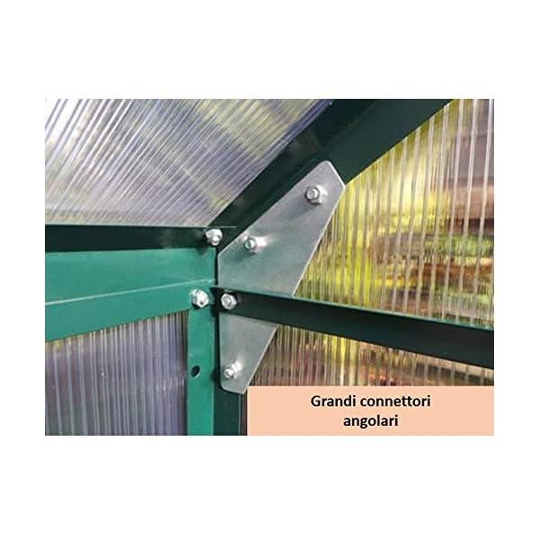 Serra Gran Torino in Alluminio e policarbonato alveolare da 6mm. Base Inclusa. Dimensioni 250 x 430 cm 4 spesavip