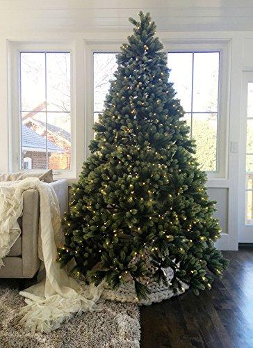 Royal Fir Tree (KING OF CHRISTMAS 6.5 Foot Royal Fir Quick-Shape Christmas Tree Unlit)