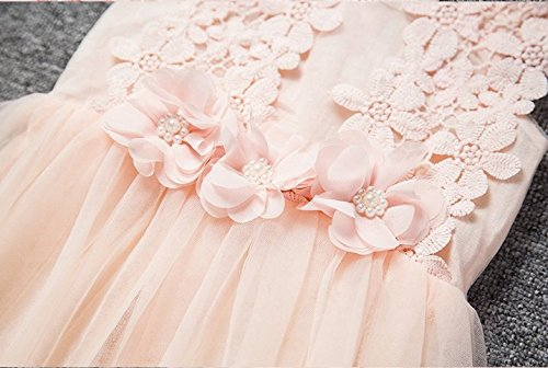 Baby Girls Sleeveless Lace Wedding Vintage Birthday Party Princess Flower Dress 3T(Tag 120) Pink by EGELEXY (Image #4)