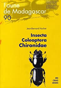Insecta coleoptera Chironidae par Bernard Huchet
