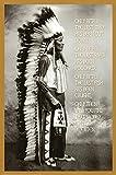 Chief White Cloud (Native American Wisdom) Art Poster Print 24 x 36in