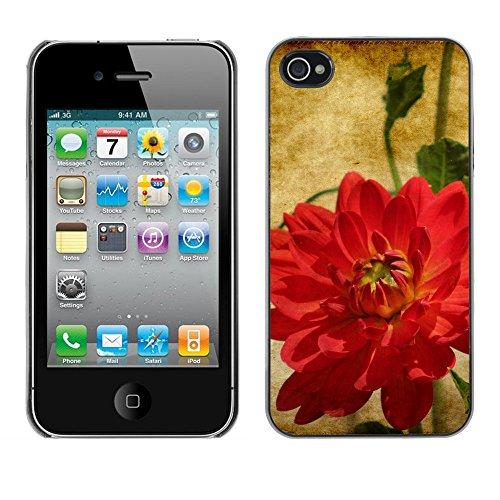 Premio Sottile Slim Cassa Custodia Case Cover Shell // F00007211 une fleur // Apple iPhone 4 4S 4G