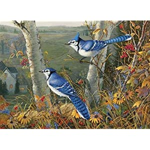 Cobblehill 80021 1000 Pc Blue Jays Puzzle Vari