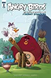 img - for ANGRY BIRDS FLIGHT SCHOOL #2 book / textbook / text book