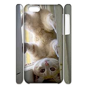 diy phone caseDIY cat 3D Phone Case, DIY 3D Case Cover for ipod touch 5 with cat (Pattern-4)diy phone case