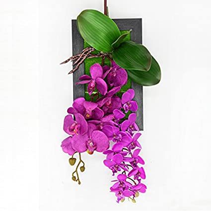 Amazon.com: Garden style plant hanging wall mural simulation shop on ...