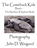 ''The Come back Kids''  Book 1, The Northern Elephant Seals