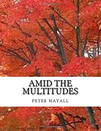 Amid the multitudes ebook
