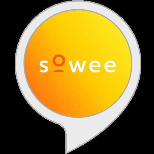 Sowee budget