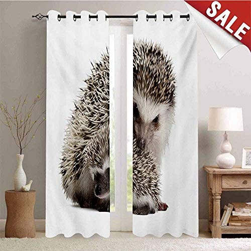 - Hedgehog Waterproof Window Curtain Atelerix Albiventris Photography with Mother and Children Love and Family Theme Room Darkening Wide Curtains W108 x L96 Inch Brown Ivory