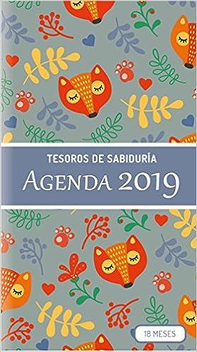 Amazon.com: 2019 Planificador - Tesoros de Sabiduría ...