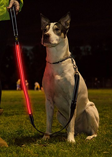 THE SPOTLITE LEASH Premium Light Up LED Flashing Dog Leash USB Rechargeable, Heavy Duty, Comfort Grip Handle, Adjustable Length up to 5 ft, with FREE Waste Bag Dispenser.