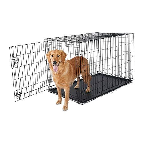 Animaze 1-Door Folding Dog Crate, 48.5