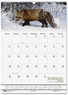 product image for HOD3732 - Wildlife Scenes Monthly Wall Calendar