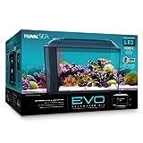 fluval filter media kit - Fluval 10531A1 SEA EVO XII Aquarium Kit