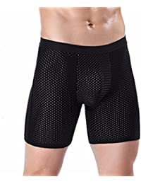 Men's Fashion Sexy Underwear Boxer Briefs Ice Silk Mesh Shorts Bulge Pouch Modal Underpants
