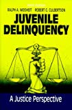 Juvenile Delinquency : A Justice Perspective, Weisheit, Ralph and Culbertson, Robert, 088133815X