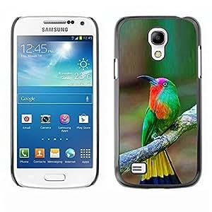 FlareStar Colour Printing Tropical Bird Songbird Brown Yellow cáscara Funda Case Caso de plástico para SAMSUNG Galaxy S4 mini (NOT FOR S4!!!) / i9190 / i9192