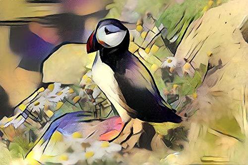 Nature Water Shorebird (Art Print)