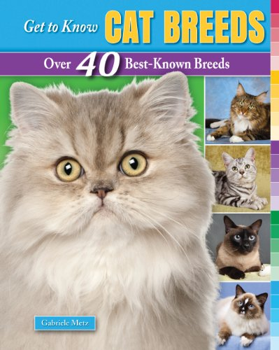 Get to Know Cat Breeds: Over 40 Best-Known Breeds (Get to Know Cat, Dog, and Horse Breeds)