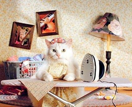 Amazon Com Funny Cute Cat Wall Decor Animal Kids Room Art Print