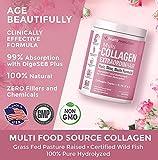 Multi Collagen Powder for Women Triple Refined