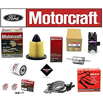 Amazon.com: Tune Up Kit 2000 – 2003 Ford Focus 2.0L L4 DOHC ...