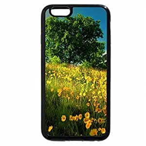 iPhone 6S Plus Case, iPhone 6 Plus Case, Lonely tree lit by the sun