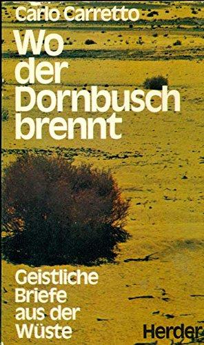 Wo der Dornbusch brennt: Geistliche Briefe aus der Wüste