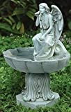 Celtic Garden Collection 19.25''h Angel Birdbath