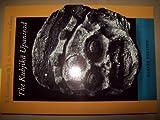 The Kubjika Unpanisad, Teun Goudriaan, 9069800675