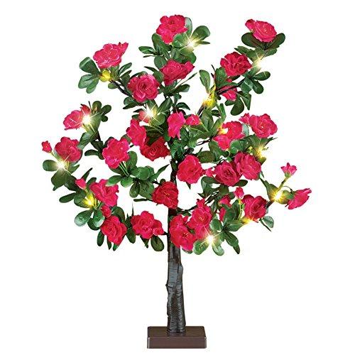 rose bush tree - 3